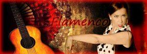 corsi di flamenco alla phoenix studio dance a.s.d.